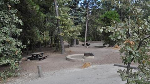 Family seating around fire ring at Dogwood Campground