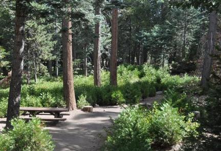 Beautiful view of Dogwood Campground