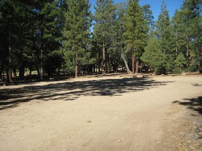 Wide open area at the Lobo Group Campground