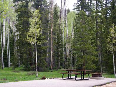 All the campsites in the A loop have a paved parking spur and table pad.  A Loop campsite