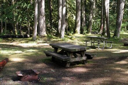 Excelsior Group Camp