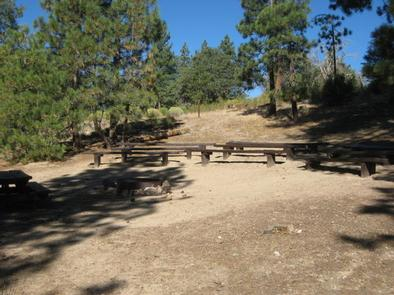 Lobo Group Campground Picnic Tables