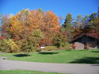 Fall at Willow Bay