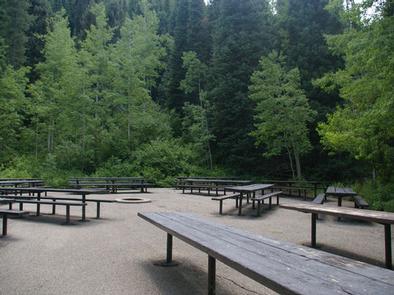 Spruces - Big Cottonwood & Spruces - Big Cottonwood | Recreation.gov