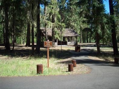 View past picnic area sign down paved road bordered with stump barriers and intermittent conifer trees, sunlit group picnic shelter in background.SALMON LA SAC