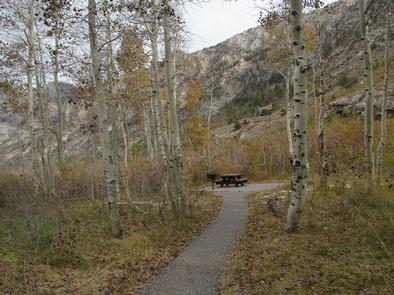 TERRACES CAMPGROUND - PICNIC AREA