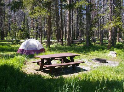 TRAP CREEK CAMPGROUND