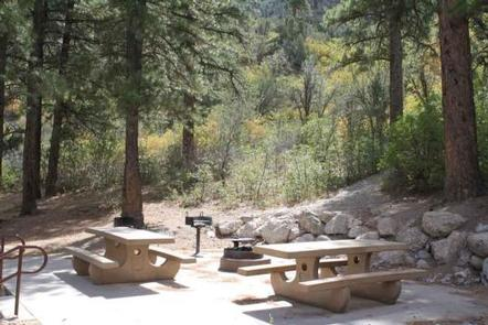 KYLE CANYON PICNIC AREA DAY USE