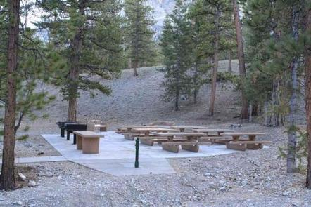 Foxtail Grp Picnic Area