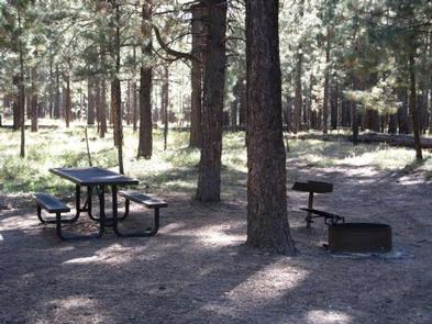 CANYON POINT campsiteCampsite in Canyon Point Campground