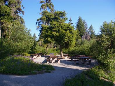 Partial shade in this group campfire area is surrounded by green vegetation with paved walkways to the sites.Shafer Butte Campground