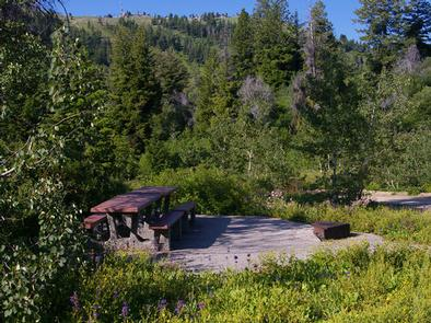 Relax with a picnic, table, firepit, paved walkways with fir, aspen trees and wildflowers all around you.Shafer Butte Campground