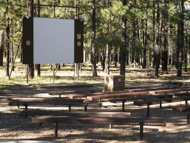 CANYON POINT Amphitheater multi-media projection screen, fire ring, and benches situated in a pine forestCanyon Point Amphitheater