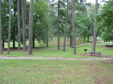 Picnic AreaPicnic area along a walking trail in Choctaw Lake Recreation Area