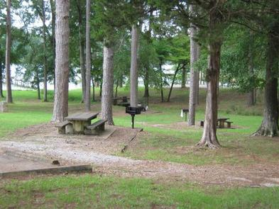 Preview photo of Davis Lake Campground
