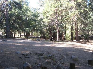Natural Shade at Pineknot Campground