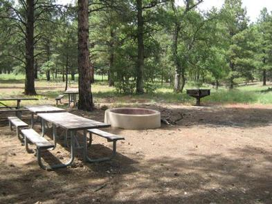 Preview photo of Little Elden Springs Horsecamp