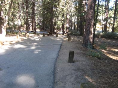 Empty Site at Pineknot Campground