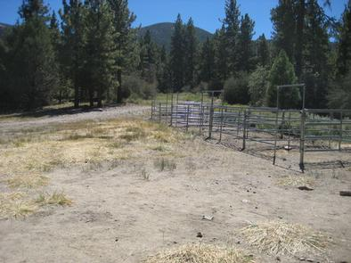 5 Horse Corrals at Green Spot Equestrian Group Camp
