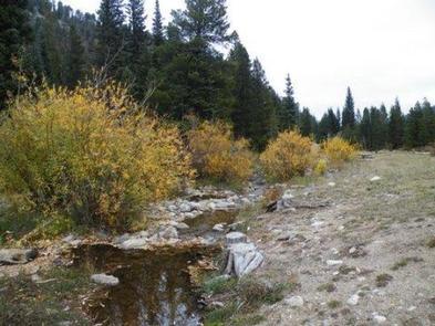CAMP DICK Creek