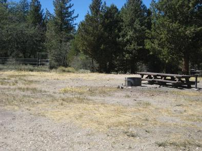 Fire Pit & Picnic Tables at Green Spot Equestrian Group Camp