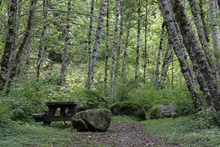 Coal Creek Group Camp