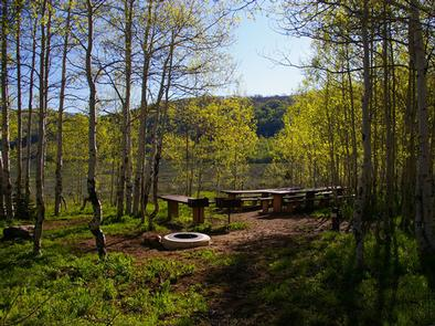 Gooseberry Group Campground