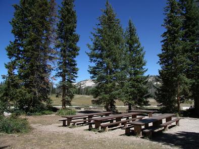 Twelve Mile  Flat Campground Twelve Mile Flat Campground