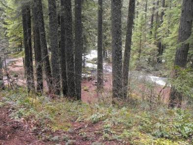 Preview photo of Olallie On Mckenzie Highway