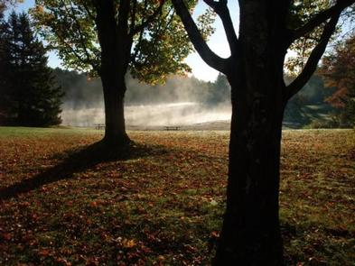 Deciduous trees in foreground with mist over pond in backgroundAutumn at Hapgood Pond