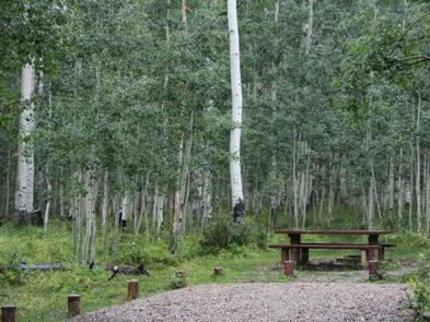 A Warner Lake campsiteCampsite at Warner Lake CG