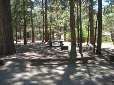 Crab Flats Campground picnic tables and log benches under the shade