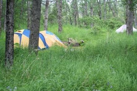 BROOKS CAMP (Search under Permits - Katmai NP)