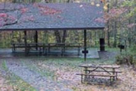COSBY PICNIC falllPicnic  pavilion