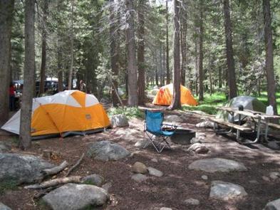 TUOLUMNE MEADOWS with tents