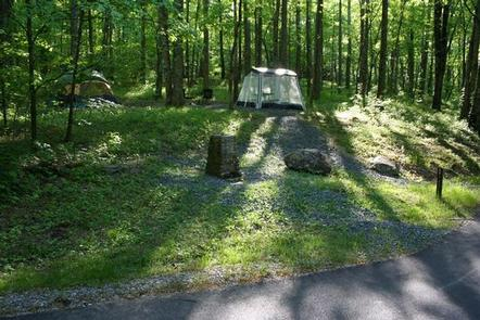 Some tent sites offset from road Potable drinking water fountains are throughout the campground. Look in site descriptions to find locations.