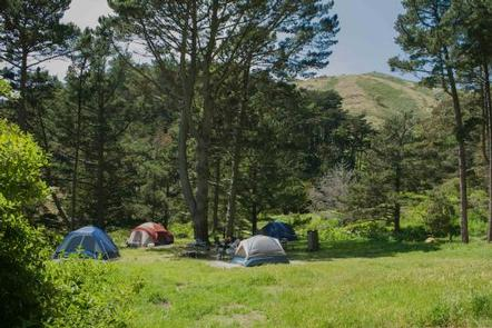 Tents dispersed at Kirby Cove, amidst green grass and Monterrey cypress.