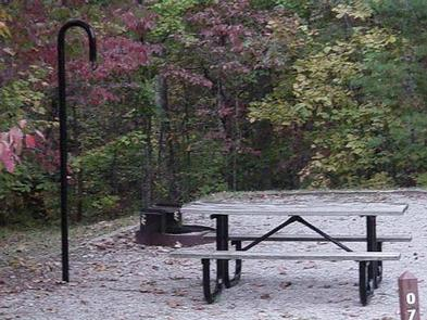 BANDY CREEKTypical campsite with picnic table, fire ring, lantern hook and tent pad.