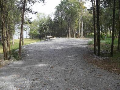 Anderson Road Campsite - electricAnderson Road Campsite