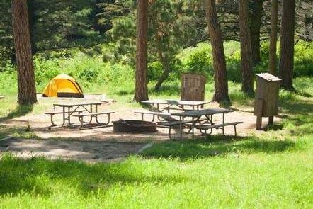 Kirby Cove Campsite with green grass, trees, and three picnic tables around a fire ring. Each Kirby Cove campsite has food lockers, a fire ring, and of course, beach access!