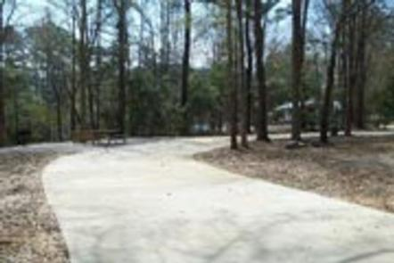 Preview photo of Millers Ferry Campground
