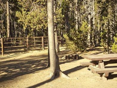 WHITEFISH HORSE CAMP