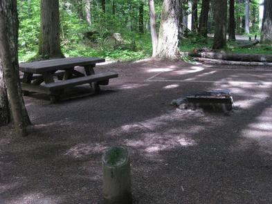 Paradise Creek campground