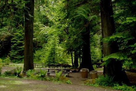 North Fork Bear Group Camp