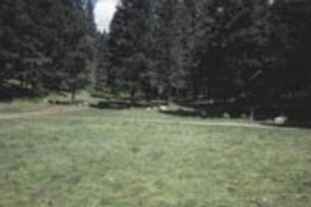 Preview photo of Lower Fir Group Area