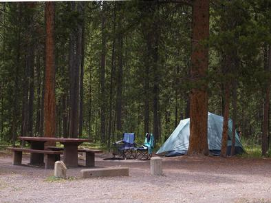 Pine trees surrounding campsite, picnic table, fire ring tent & camp chairsCampsite