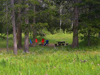 Campsite surrounded by pine trees,  picnic table, fire ring & camp chairsCampsite