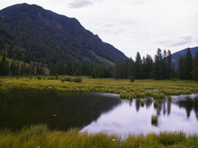 Beaver pond with mountain viewBeaver pond