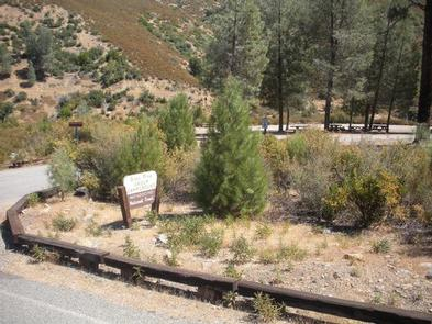 Preview photo of Gray Pine Group Campground