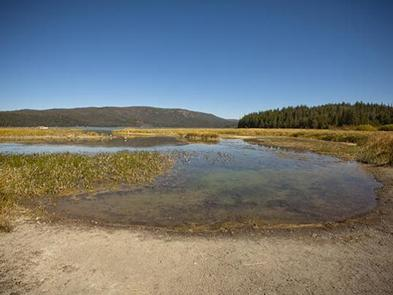Preview photo of Paulina Lake Campground